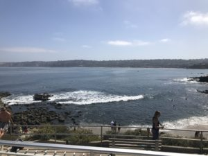 View from La Jolla Cove